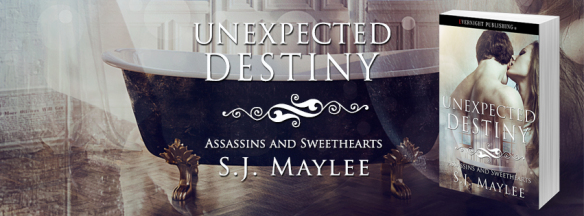 unexpected-destiny-evernightpublishing-2016-banner3